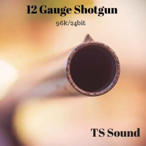 TS Sound - 12 Gauge Shotgun