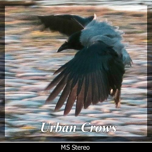 Detunized - Urban Crows